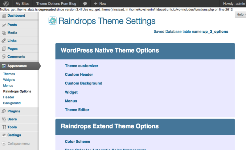 Raindrops Theme Options