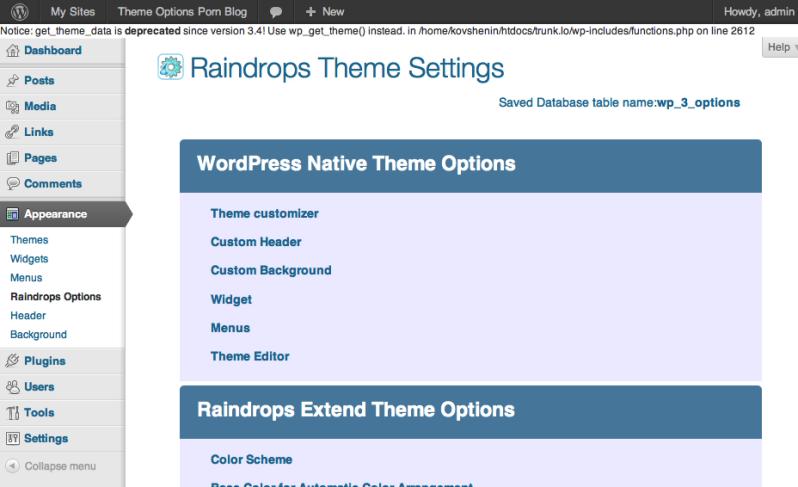 Raindrops Theme Options